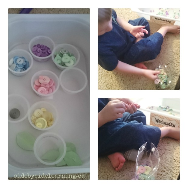 Fine Motor Button Color Sorting