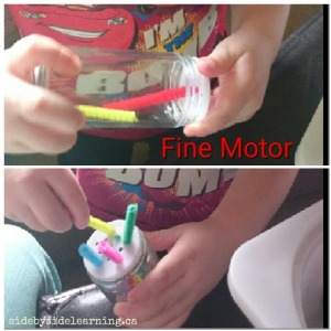 Fine Motor Pipe Cleaners