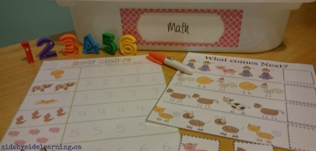 Math - Farm Counting and Patterns