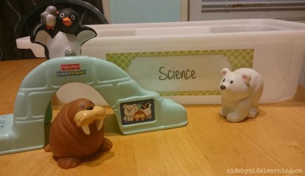 Science - Arctic Sensory Bin