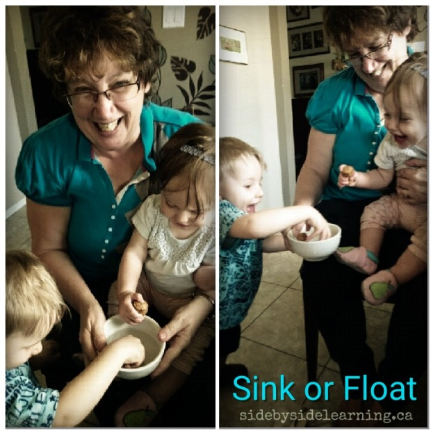 Sink and Float Science