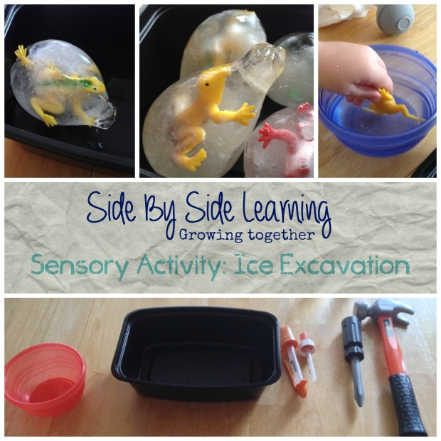 Sensory Activity Ice Excavation