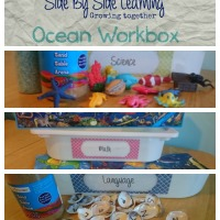 Ocean Unit Workboxes for your Three Year Old
