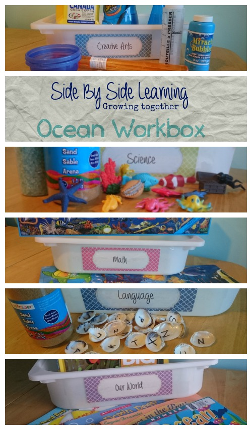 Workbox Ocean 3 year old