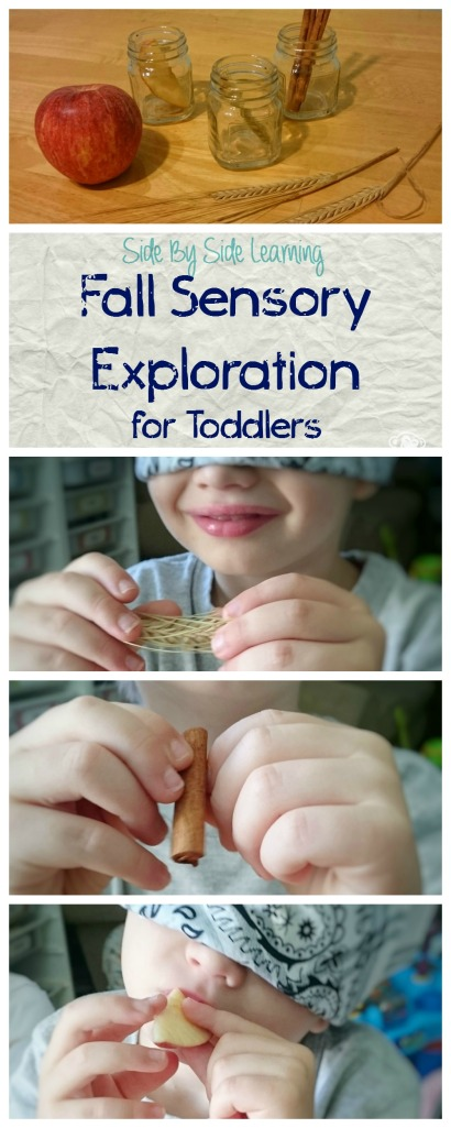 Fall Sensory Exploration for Toddlers