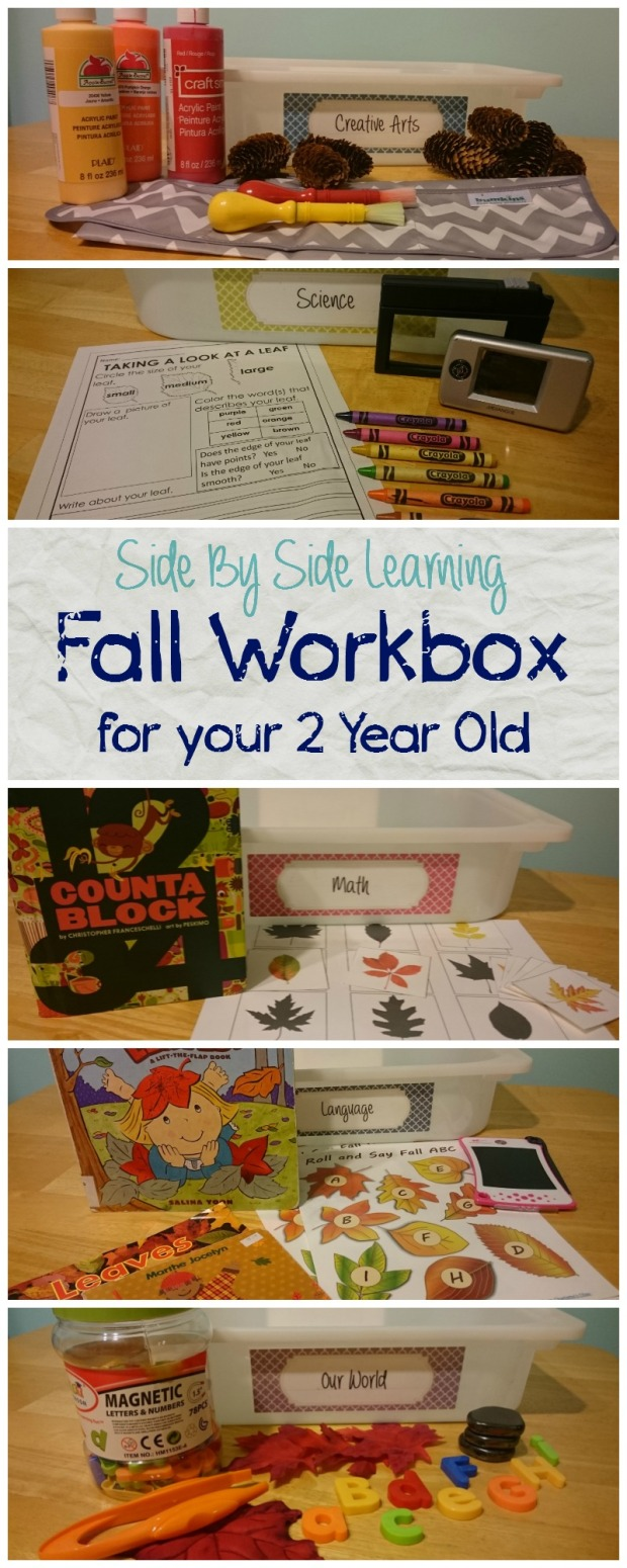 Workbox Fall 2 year old